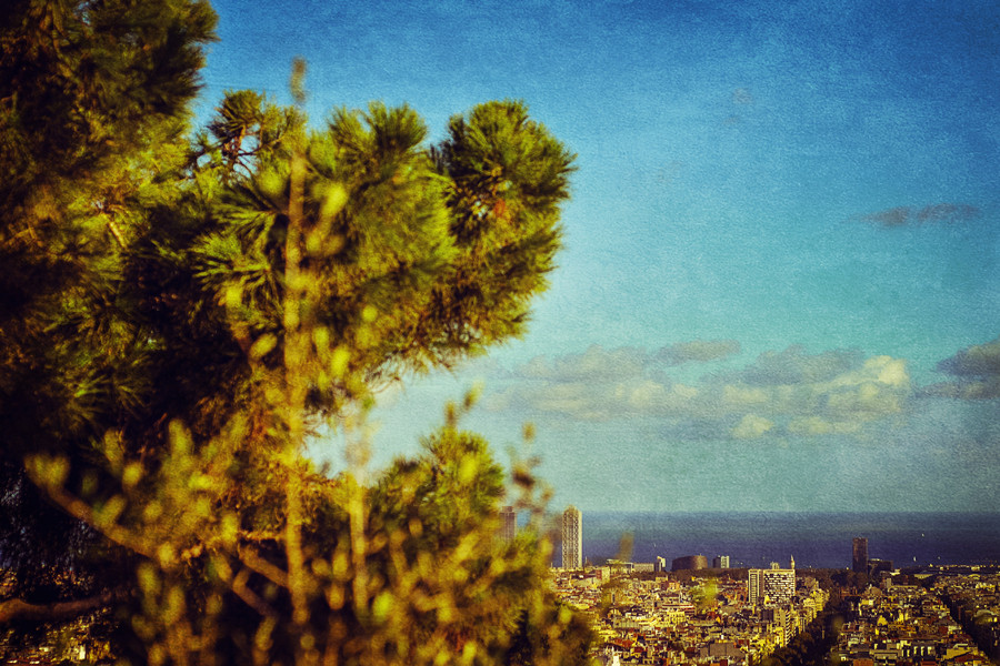 View over Barcelona city from Park Guell